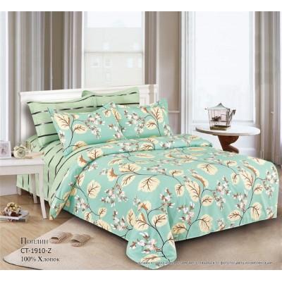 Комплект постельного белья (1,5 спальный) Хлопок (Поплин) СТ-1910-Z