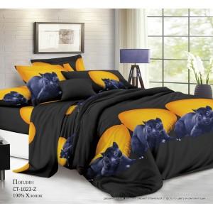 Комплект постельного белья (2-х спальный-Евро) Хлопок (Поплин) CT-1023-Z