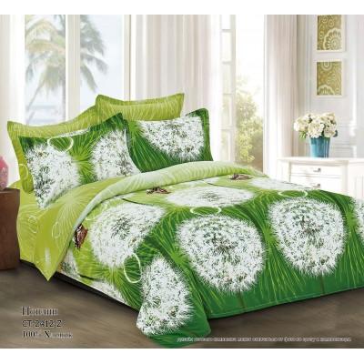 Комплект постельного белья (2-х спальный-Евро) Хлопок (Поплин) СТ-2412-Z