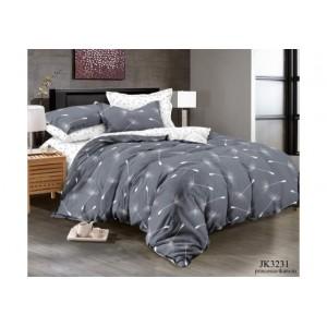 Комплект постельного белья (1,5 спальный) Хлопок (Поплин) JK-3231