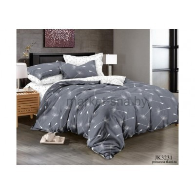 Комплект постельного белья (2-х спальный-Евро) Хлопок (Поплин) JK-3231