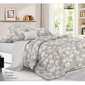 Комплект постельного белья (2-х спальный-Евро) Хлопок (Поплин) CT-819-Z