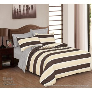Комплект постельного белья (2-х спальный-Евро) Хлопок (Поплин) СТ-1912-Z