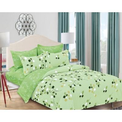 Комплект постельного белья (2-х спальный-Евро) Хлопок (Поплин) CТ-2113