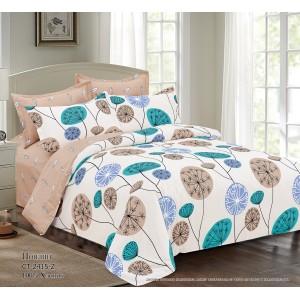 Комплект постельного белья (Евро) Хлопок (Поплин) СТ-2415-Z