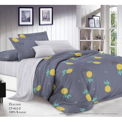 Комплект постельного белья (Евро) Хлопок (Поплин) CT-412-Z