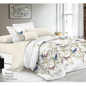 Комплект постельного белья (Евро) Хлопок (Поплин) СТ-913-Z