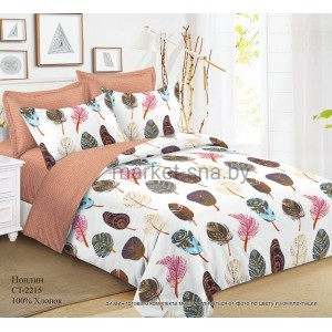 Комплект постельного белья (Евро) Хлопок (Поплин) СТ-2215-Z