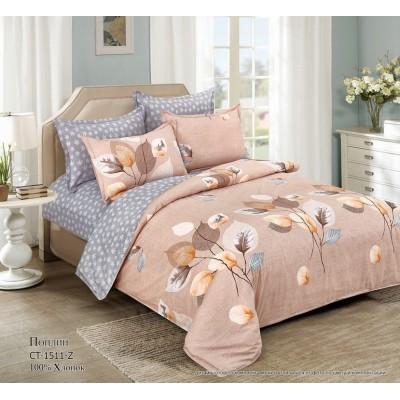 Комплект постельного белья (Семейный/Дуэт) Хлопок (Поплин) СТ-1511-Z
